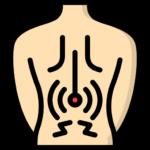 Kiropraktikk